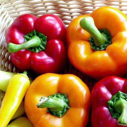 Prévenir la maladie de Parkinson en mangeant des poivrons ?