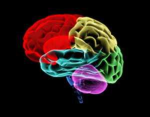 Neurotrack : diagnostic de la maladie d'Alzheimer par les yeux